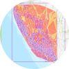 GeoCode_circle.jpg