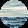 ocean_Ant Rozetsky .png