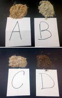Sediment Sampels