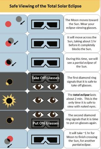 Eclipse Infographic