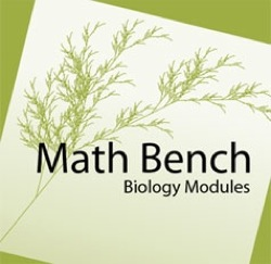 Math Bench logo