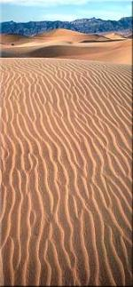 Ripple marks on Death Valley Dunes