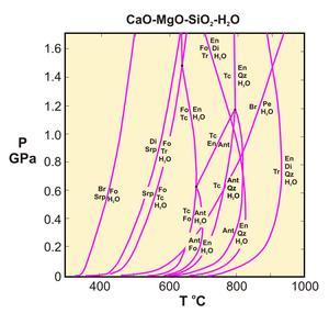 CMSH petrogentic grid