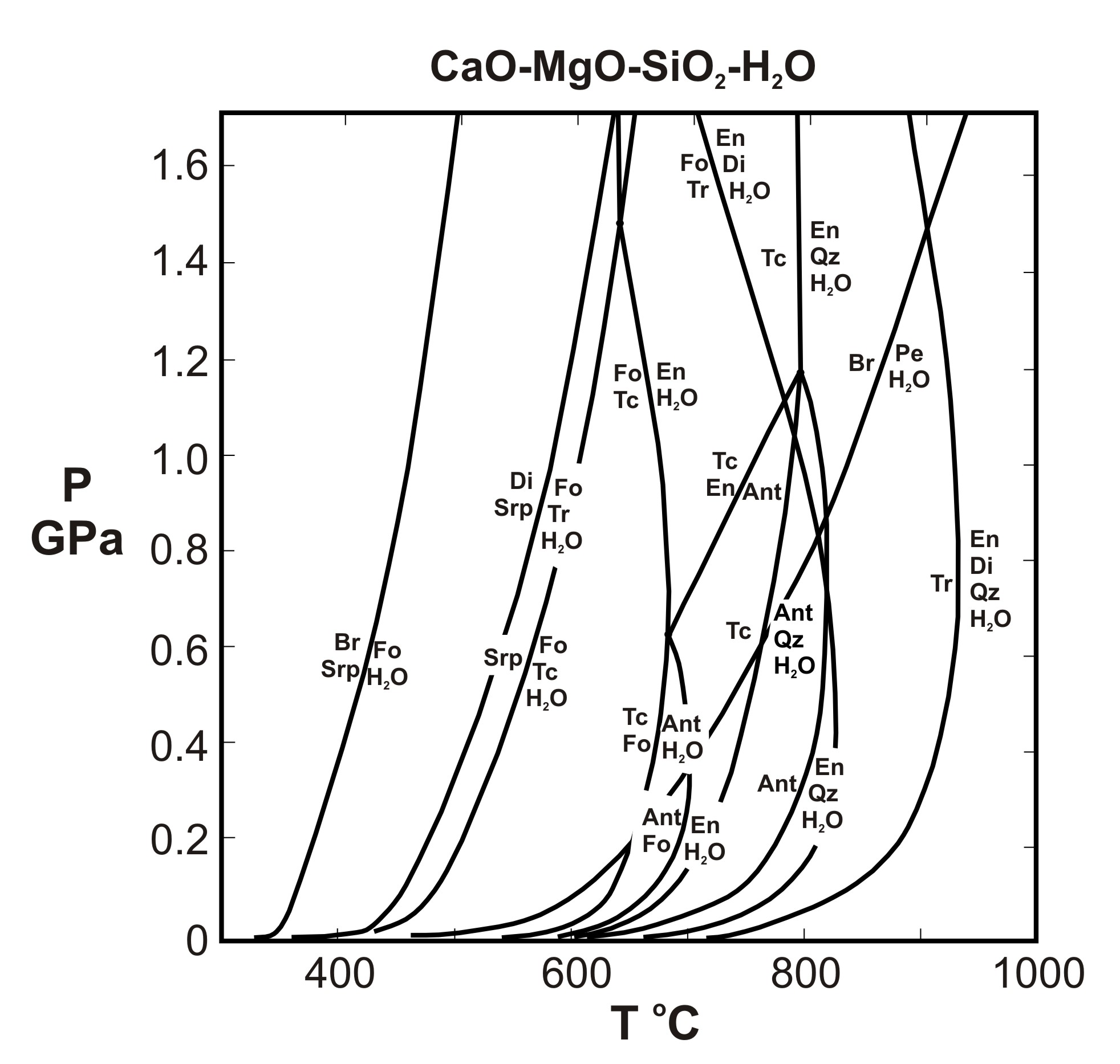 Metamorphic p t diagrams reactions in the system cmsh pooptronica