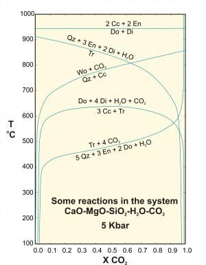 Some reactions in the system CaO-MgO-SiO2-H2O-CO2
