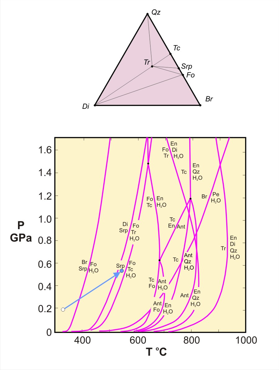 Metamorphic p t diagrams animated pdf showing changes in minerals assemblages during progressive metamorphism in the cao mgo sio2 h2o system pooptronica