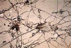 Photomicrograph of kyanite inclusions in garnet