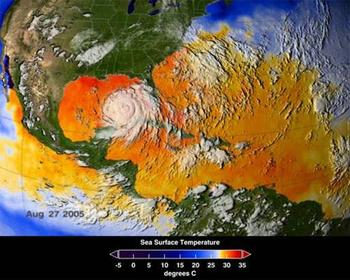 Hurricane Katrina sea surface temperatures.