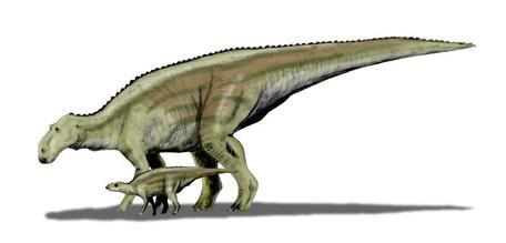 Maiasaura and young