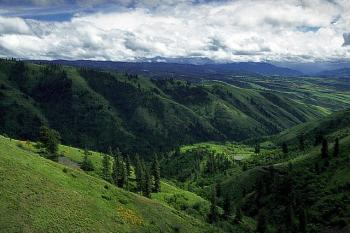Foothills of the Clearwater Mountains.