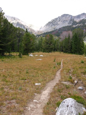 Bear Basin Trail