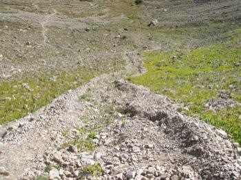 Debris Flow with Marginal Levees