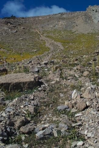 Debris flow path