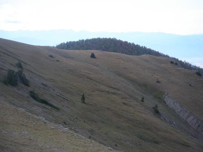 Soil creep and solifluction, west side Sacagawea Peak