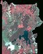 Small false color satellite image of Yellowstone.