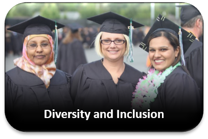 Broaden Participation through Diversity and Inclusion