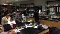NOVA Mineralogy Students