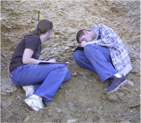 Historical geology students make observations of sediments and shells in the field.