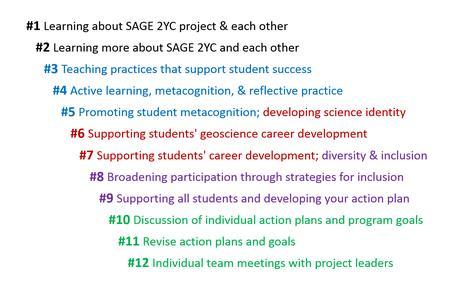 SAGE 2YC Cohort2 PD 2017