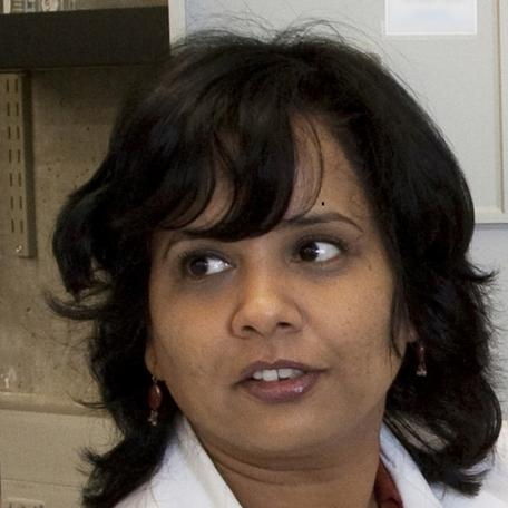 Gita Bangera picture