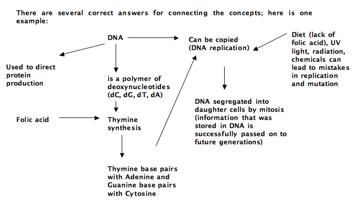 ap biology essay questions dna replication