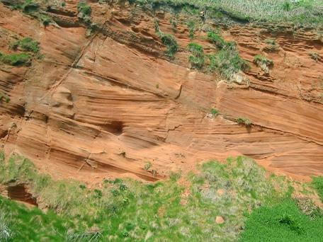 Cross-bedded Permian sandstone