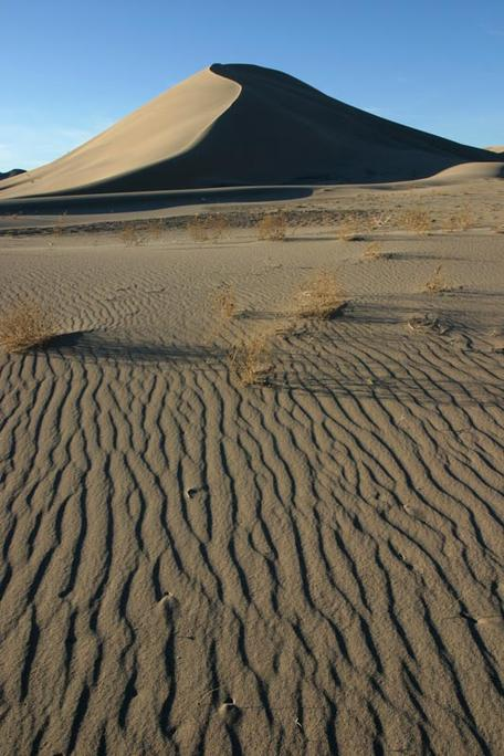 Wind ripples and dune, SE California
