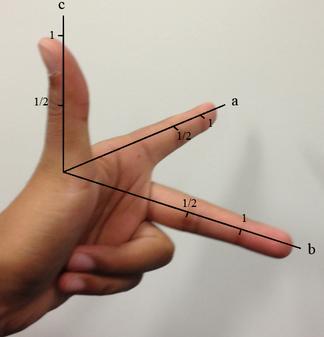 Miller Indices gesture photo
