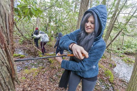 William Paterson University student Rose Oelkers cores a tree in High Point State Park in NJ.