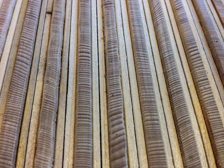 Tree-ring patterns from white spruce trees in Alaska. Each ring represents a year of growth. The wide rings indicate good growing conditions (warmer summers in this case). Photo Credit: Nicole Davi.