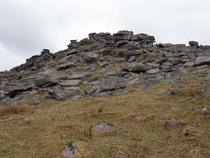 A bedrock tor
