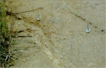 Fig. 4. Erosion measurement pins