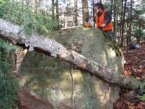 Figure 2. glacial erratic boulder