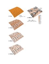 Figure 4—Simulations of tor development