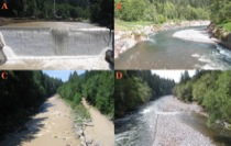 Marmot Dam: Before and After
