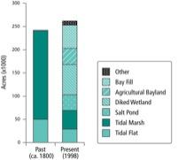 Tidal Marsh and Tidal Flat Abundance