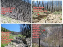 Post-fire erosion in the Middle Fork Salmon River, Idaho