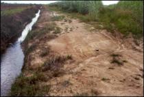 Fig. 3. Soil Erosion on Headland