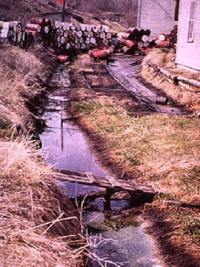 Trial-era photo of barrels near an Aberjona tributary